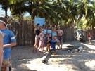 Madagascar Beach Conservation