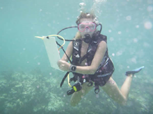 Belize Marine Conservation & Diving