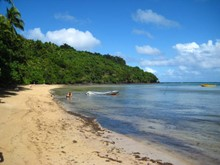 Fiji Adventurer (Teaching & Marine Conservation)
