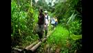 Environmental & Wildlife Conservation in the Amazon Rainforest