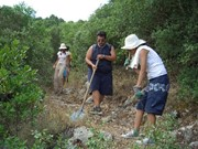 Volunteer to support agricultural projects overseas
