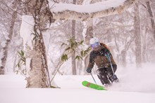 Niseko intern skiing through the trees in Japan